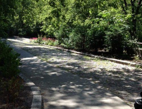 Présentation des aménagements cyclables sur Badelard