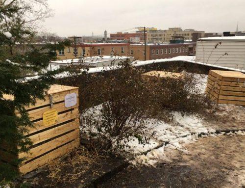 Les bacs à compost ont été installés