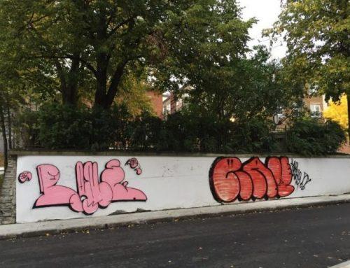 Une nouvelle fresque au Parc Berthelot